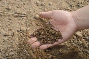 soil-766281_960_720
